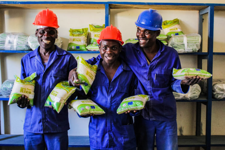 Tradeline supports SMEs in the agricultural sector in countries like Malawi