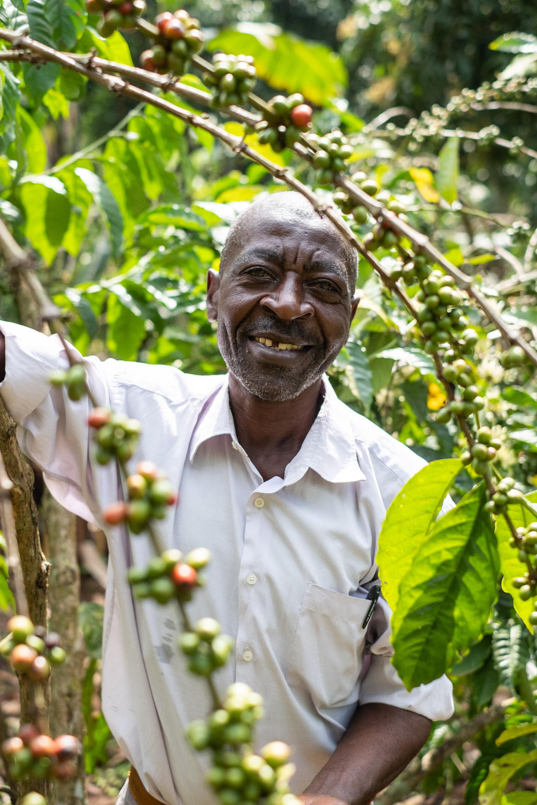 Eerlijke handel staat centraal bij de Katikamu Poultry Coöperatieve (centraal-Oeganda).