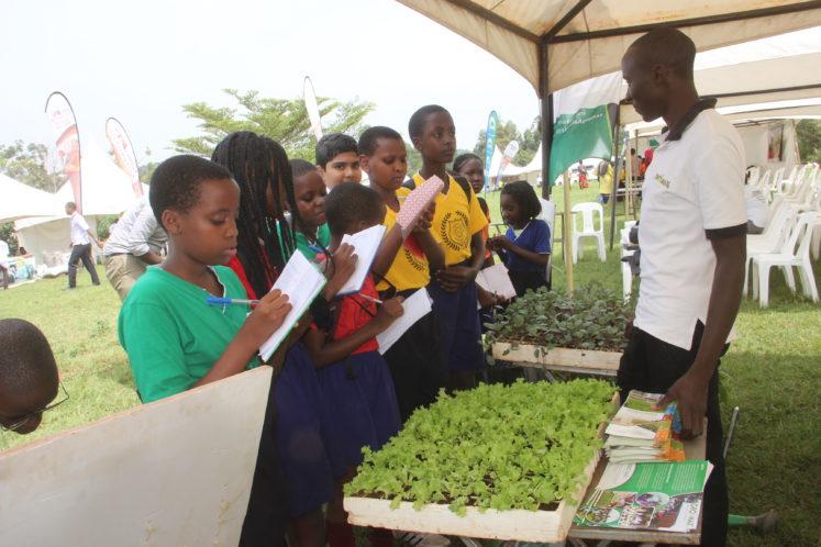 Kleine landbouwers omscholen tot agripreneurs dat is de missie van Gudie Leisure Farm (Oeganda).